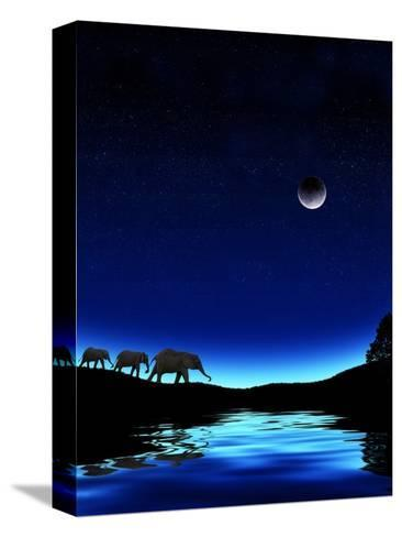 Three Elephants Walking Past Water-Mike Agliolo-Stretched Canvas Print