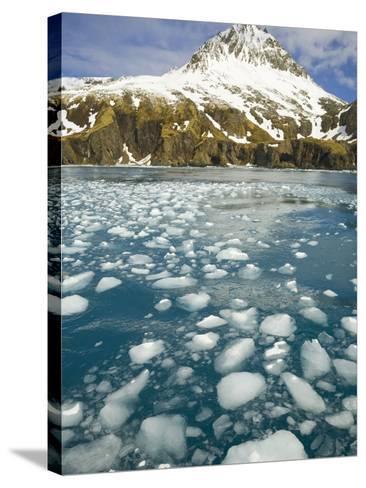 Ice Chunks From Twitcher Glacier Below the Salvesen Range-John Eastcott & Yva Momatiuk-Stretched Canvas Print