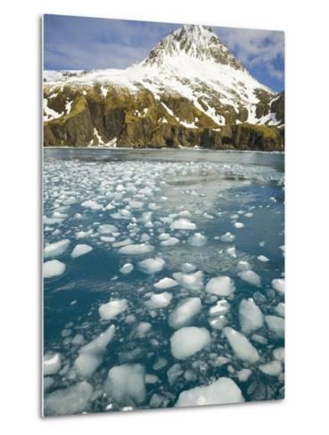 Ice Chunks From Twitcher Glacier Below the Salvesen Range-John Eastcott & Yva Momatiuk-Metal Print
