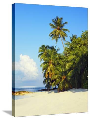 Beach at Soneva Fushi Resort in the Baa Atoll-Frank Krahmer-Stretched Canvas Print