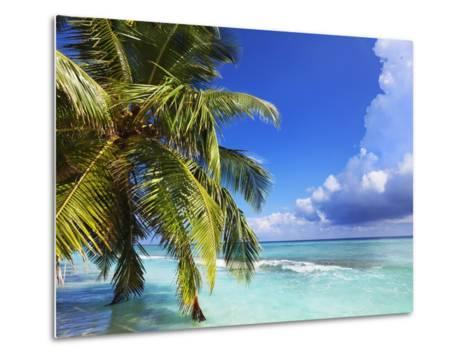 Beach at Soneva Fushi Resort in the Baa Atoll-Frank Krahmer-Metal Print
