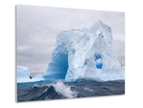 Blue Iceberg Sculpted by Waves and Southern Giant Petrel in Flight-John Eastcott & Yva Momatiuk-Metal Print