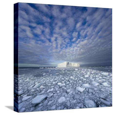 Blue Tabular Iceberg Sculpted by Waves-John Eastcott & Yva Momatiuk-Stretched Canvas Print