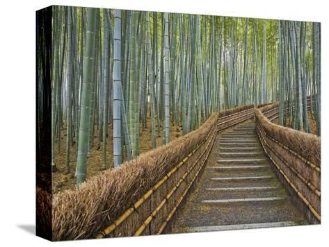Bamboo Lined Path at Adashino Nembutsu-ji Temple-Rudy Sulgan-Stretched Canvas Print
