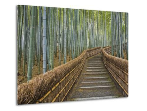 Bamboo Lined Path at Adashino Nembutsu-ji Temple-Rudy Sulgan-Metal Print