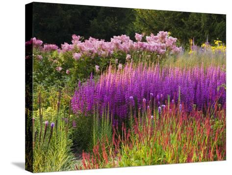Trentham Gardens-Clive Nichols-Stretched Canvas Print