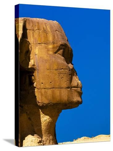Detail of Great Sphinx at Giza-Blaine Harrington-Stretched Canvas Print