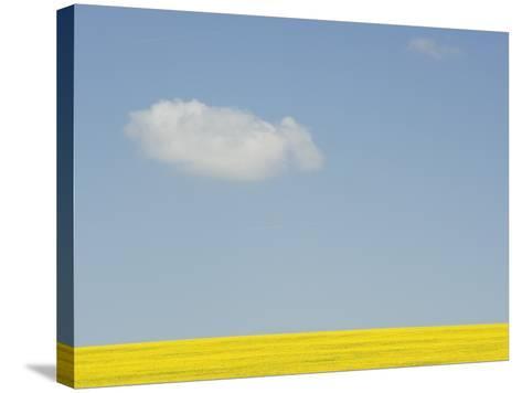 Wiltshire landscape-John Harper-Stretched Canvas Print