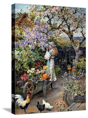 An English Cottage Garden-William Stephen Coleman-Stretched Canvas Print