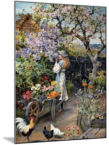 An English Cottage Garden-William Stephen Coleman-Mounted Giclee Print