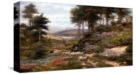 Through the Heather, Dunkeld, Scotland, United Kingdom-George Vicat Cole-Stretched Canvas Print