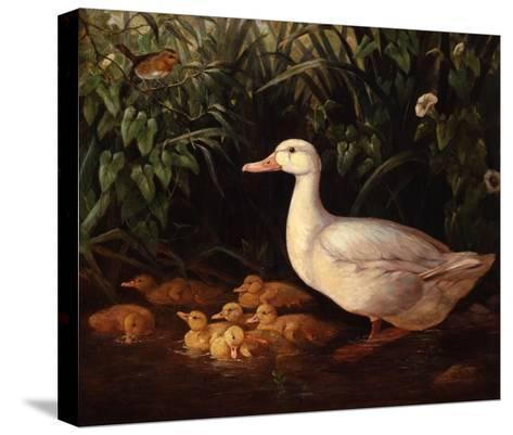 New Brood-Edward Neale-Stretched Canvas Print