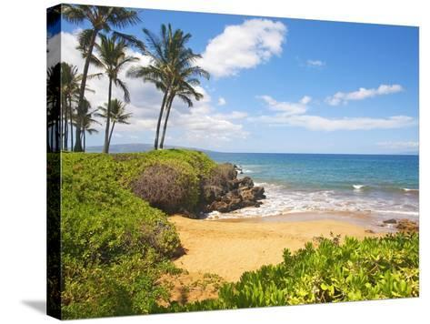 Secluded Po'olenalena Beach on Maui-Ron Dahlquist-Stretched Canvas Print