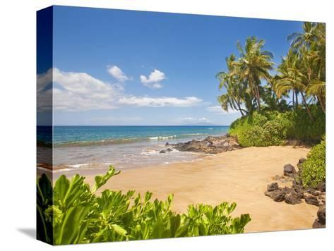 Secluded sandy beach on Maui-Ron Dahlquist-Stretched Canvas Print