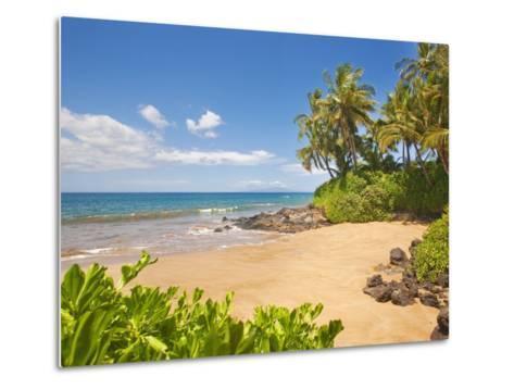 Secluded sandy beach on Maui-Ron Dahlquist-Metal Print