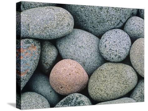 Detail of Pebbles on Long Island, Nova Scotia, Canada-Don Johnston-Stretched Canvas Print