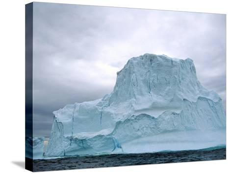 Iceberg, Witless Bay Ecological Reserve, Newfoundland, Canada-Barrett & Mackay-Stretched Canvas Print
