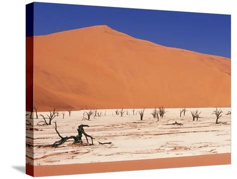 Dead Tree Skeletons and Cracked Clay Surrounded by Sand Dunes, Dead Vlei, Namib-Naukluft National P-Garry Black-Stretched Canvas Print