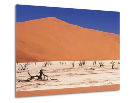 Dead Tree Skeletons and Cracked Clay Surrounded by Sand Dunes, Dead Vlei, Namib-Naukluft National P-Garry Black-Metal Print