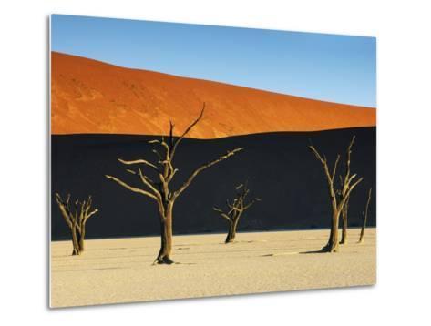 Bare trees at Dead Vlei-Frank Krahmer-Metal Print