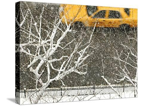 Yellow cab on Park Avenue in a snowstorm-Bo Zaunders-Stretched Canvas Print