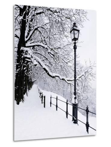 Trees and lamp post in snow-Bruno Ehrs-Metal Print