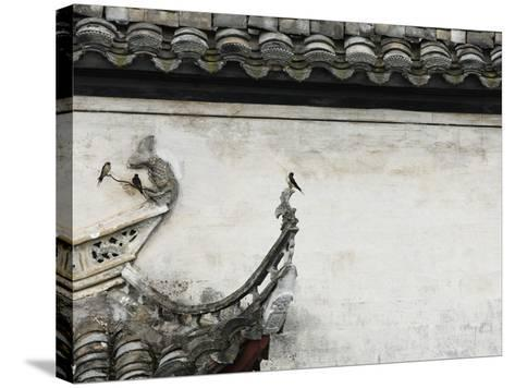 Birds on tiled roof in Xidi, China-Yang Liu-Stretched Canvas Print