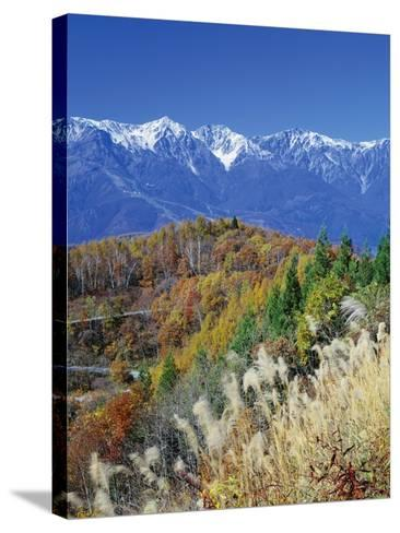 Mountain range and autumn foliage, Hakuma Miyama, Nagano Prefecture, Japan--Stretched Canvas Print