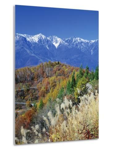 Mountain range and autumn foliage, Hakuma Miyama, Nagano Prefecture, Japan--Metal Print
