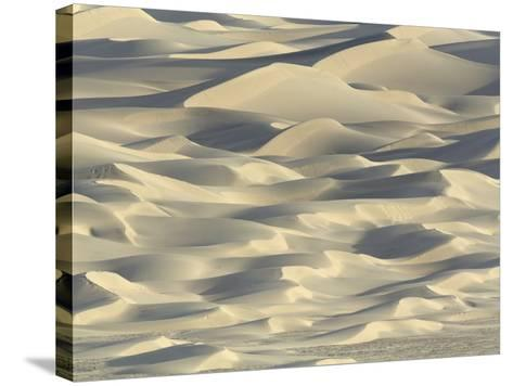 Sand dunes in Death Valley National Park-John Eastcott & Yva Momatiuk-Stretched Canvas Print