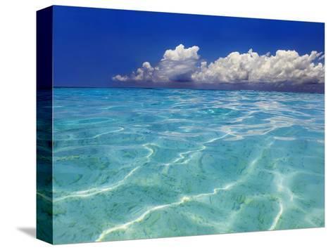 Tropical lagoon, Kunfunadhoo, Baa Atoll, Maldives-Frank Krahmer-Stretched Canvas Print