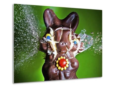 Dum Dum Bunny-Alan Sailer-Metal Print