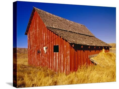 Weathered Old Barn on Ranch-Terry Eggers-Stretched Canvas Print