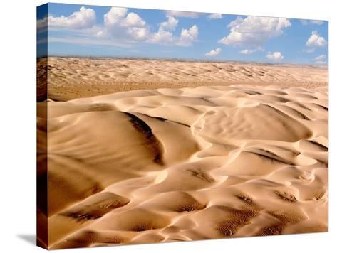 Desert Landscape-Craig Aurness-Stretched Canvas Print