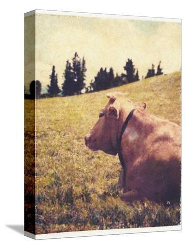 Alpine Cow No.2-Jennifer Kennard-Stretched Canvas Print