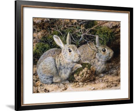 Two Rabbits-John Sherrin-Framed Art Print