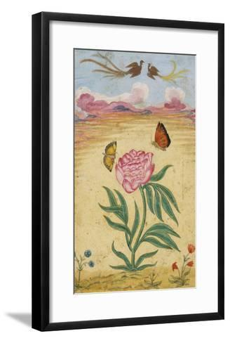 Mughal Miniature Painting Depicting a Peony with Birds of Paradise and Butterflies-Stapleton Collection-Framed Art Print