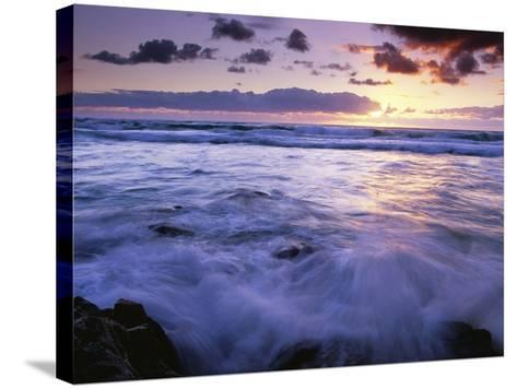 Fraser Island Coast at Sunrise-Theo Allofs-Stretched Canvas Print