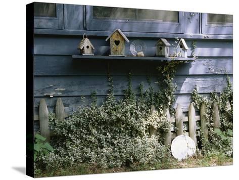 Roma's House-Kim Koza-Stretched Canvas Print
