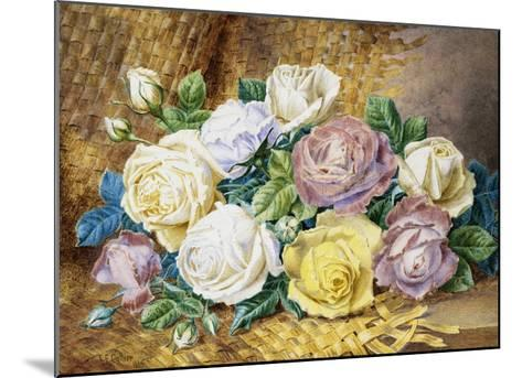 A Still Life of Roses-Thomas Frederick Collier-Mounted Giclee Print