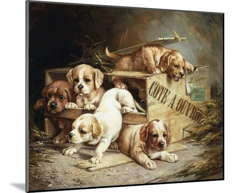 Tumbling Retriever Puppies-Frederico Olaria-Mounted Giclee Print