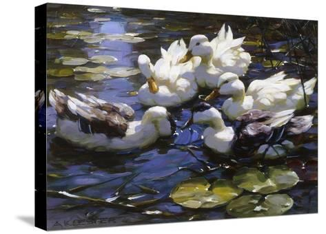 Ducks on the River-Alexander Max Koester-Stretched Canvas Print