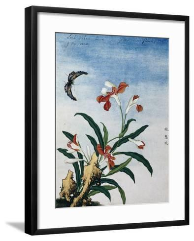 Chinese Watercolor of a Green Onion Flower--Framed Art Print