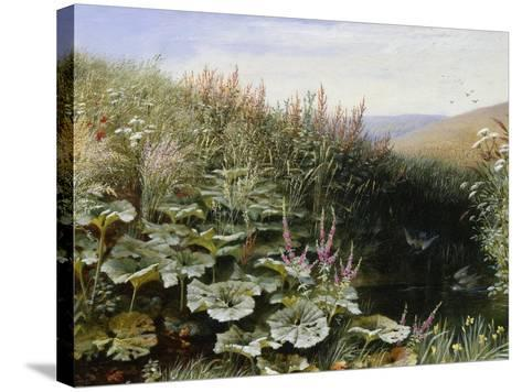 On the Riverbank-Robert Collinson-Stretched Canvas Print