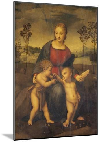 Madonna of the Goldfinch-Raphael-Mounted Giclee Print
