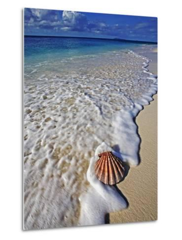 Scallop Shell in the Surf-Martin Harvey-Metal Print