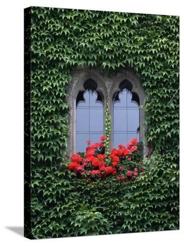 Window of Regensburg Town Hall-Adam Woolfitt-Stretched Canvas Print
