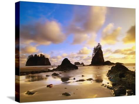 Sea Stacks Off Second Beach-Ron Watts-Stretched Canvas Print