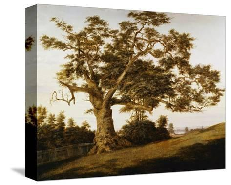 The Charter Oak-Charles de Wolfe Brownell-Stretched Canvas Print