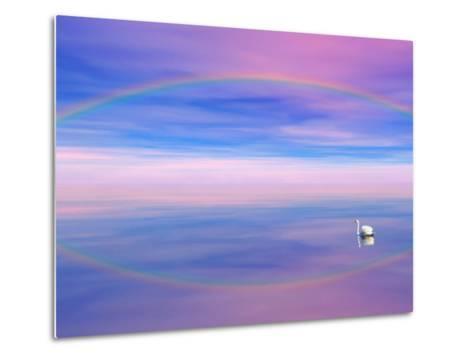 Rainbow Reflecting over Swan-Cindy Kassab-Metal Print